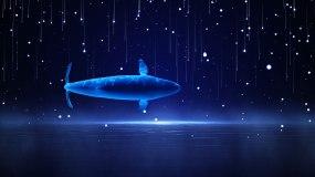 4K梦幻鲸鱼舞台循环8视频素材