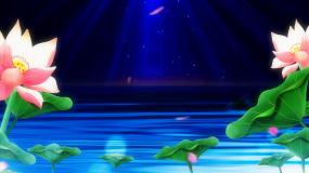 蓝色荷花鲤鱼背景视频素材