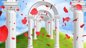 梦幻欧式拱门穿梭婚礼花瓣飘落LED背景视频素材