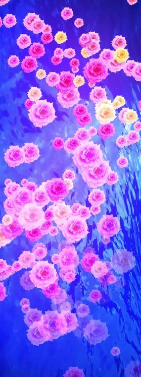 竖版花飘落在水中逐渐蔓延夏天视频素材