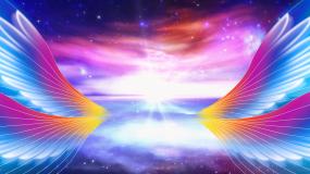 梦想展翅飞翔星空背景视频素材