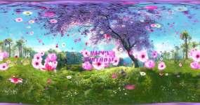 全景粉色樱花生日背景素材视频素材