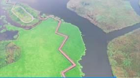 航拍西双湖风景秋日白鹭视频素材