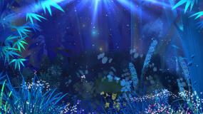 神秘灵动森林夜晚萤火虫背景视频素材