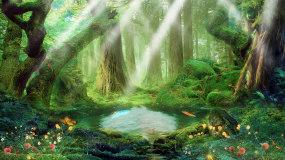 唯美森林阳光照射蝴蝶飞舞背景视频02视频素材