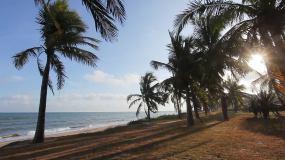 海南三亚海边椰林旅游风光视频素材