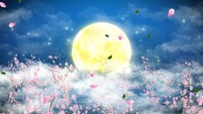 花好月圆月中秋夜无缝循环AA视频素材