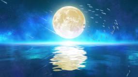 唯美鱼群月亮4k(4)-无缝循环视频素材