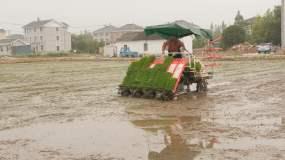 现代化农业插秧视频素材