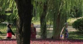 4K清晨公园锻炼的老人02视频素材包