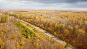 【4K】俯拍公路森林大气震撼风景视频素材