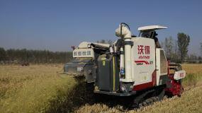 收割机收稻子视频素材