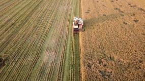 稻田现代化收割航拍视频素材