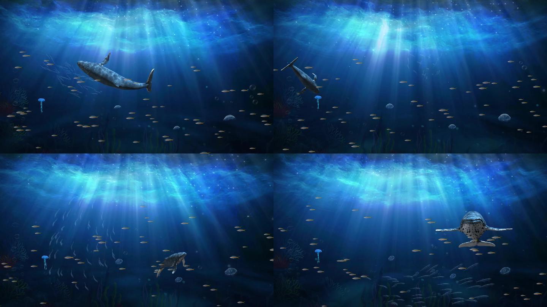 通透阳光照射海底世界