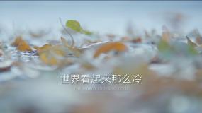 二十四节气-立冬15秒短视频2AE模板