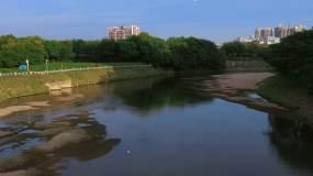 4k航拍深圳龙华观澜河风光飞鸟视频素材包