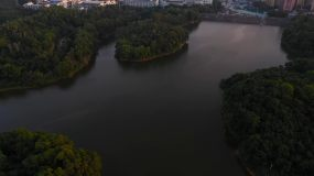 4k航拍深圳观澜湖远处的高楼视频素材包
