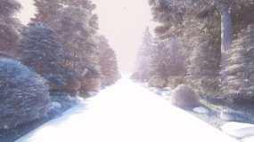 森林道路冬天雪景4K视频素材