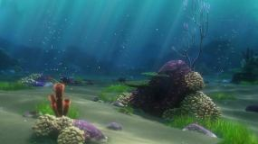 海底世界珊瑚风景美景海藻海草视频素材