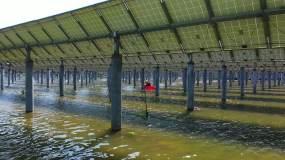 鱼光互补千亩光伏发电站视频素材包