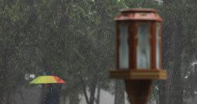 雪中天坛公园撑伞游客4k视频素材