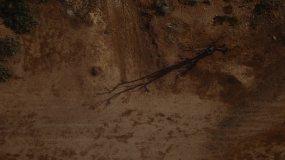 干旱地区沙漠荒原燃烧的篝火视频素材