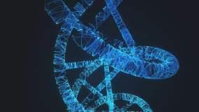 DNA视频素材