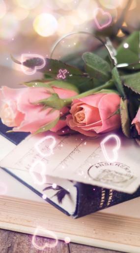 竖版-唯美温馨玫瑰书本静物场景视频素材