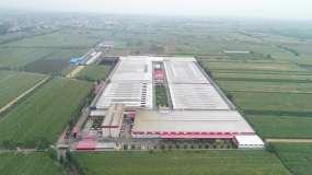 养鸡场工厂养殖厂农业养殖业农场视频素材