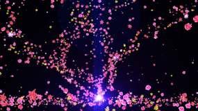 花朵粒子飞舞视频素材