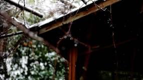雪景视频素材