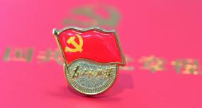 4K党政-党章-党员学习宪法-党旗红旗视频素材