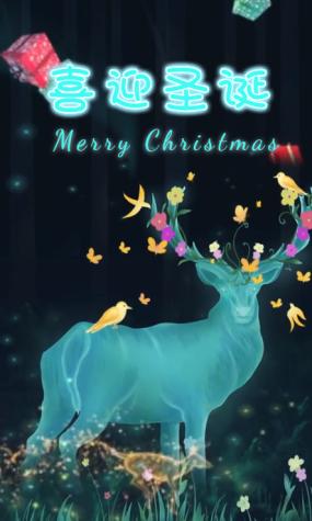 圣诞节宣传习俗视频(包含无字背景版本)视频素材包