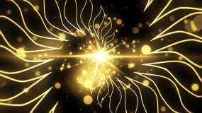 4K金色花绽放粒子花束春节年会舞台背景视频素材