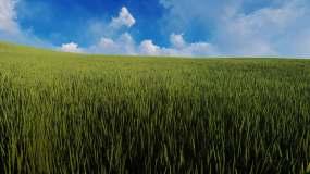 蓝天白云草原原始森林氧吧动画视频素材