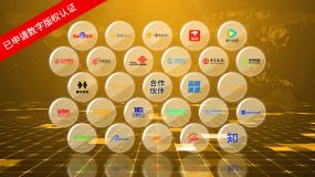 【无插件】金色(4款)合作伙伴展示AE模板