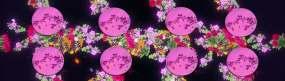 蝴蝶花全息带盘餐桌投影素材视频素材
