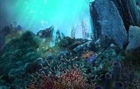 唯美意境的海底世界视频素材