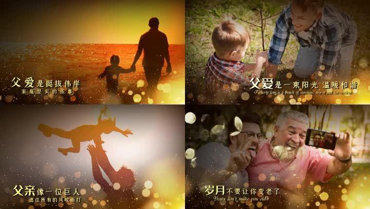 温馨感恩父亲节图文宣传展示会声会影模版