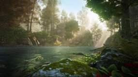 神秘奇幻森林河流流淌阳光明媚视频素材