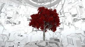 科技树红叶科技背景视频素材包