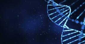 DNA环结构视频素材