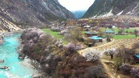 4K西藏帕隆藏布江美丽村庄格巴村航拍素材视频素材