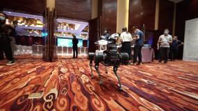 机器狗模型建筑视频素材