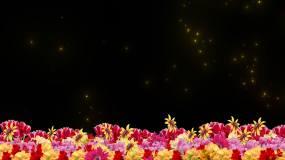 鲜花大屏边框素材视频素材