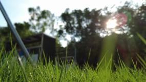阳光草地空镜视频素材