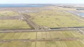 东北水稻黑土地航拍15(4K50帧)视频素材